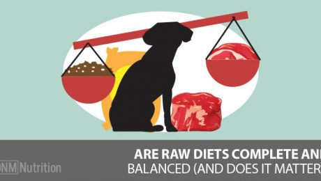 Are raw diets complete